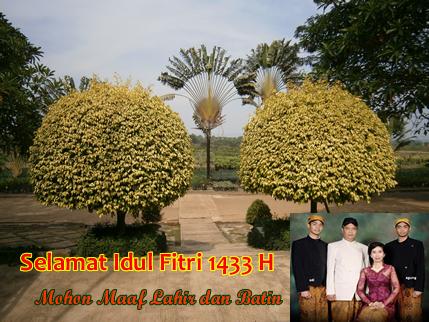 Selamat Idul Fitri 1 Syawal 1433 H